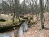 orzechowo-rzeka-6